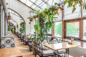СЕО продвижение ресторанов и кафе в интернете